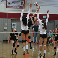 (Photograph by Bill Gerth for SVCN) Westmont #16 Melina Mahood goes for a spike vs Piedmont Hills in a BVAL Girls Volleyball Game at Westmont High School, Campbell CA on 9/29/16.  (Piedmont Hills wins 3-0, 25-13, 25-14, 25-20)