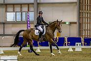 2018-02-15 Dressage Nationals (Thurs) - Young Dressage Horse