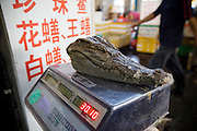 Guangzhou, China - <br /> <br /> Forbidden Fruit<br /> <br /> 'Turtle Meat can cure cancer!'- Such traditional wisdom is widespread in Guangzhou, whose markets stock exotic and endangered animals destined for restaurant menus, pharmacists and pet cages. However a movement of nascent NGOs such as the South China Nature Society, run by student conservationists, is challenging centuries of ancient wisdom by trying to change consumer appetites in South China. <br /> <br /> Guangzhou is the richest and most powerful city in southern China, with a keen taste for exotic animals and plants, seen as extreme even in other regions of China. <br /> <br /> The main reason for this is 2,000-year-old Traditional Chinese Medicine that lists curative qualities in thousands of rare and exotic animals, such as the Sumatran Tiger. It is often the case, that the more rare the animal the greater the affect. <br /> <br /> The pursuit of these traditions is the driving force behind the $20 billion USD illegal wildlife network; the worlds third largest elicit trade, surpassed only by arms and drugs. The network activity intensifies in South East Asia home to rich biodiversity, well developed transport infrastructures, high profit margins and lax law enforcement, a haven for wildlife smugglers. <br /> <br /> February 2009 - Vietnamese authorities recently seized a record haul of smuggled wildlife including two tons of Tiger Bones, Bear Paws and Gall Bladders. The destination was China where Tiger bones can fetch up to $70,000. <br /> <br /> One may of thought that the rise of Guangzhou's economy and subsequent education would have reduced the consumption of endangered animals, but quite the opposite. Rising incomes have allowed more consumers to indulge in exotic foods once considered exclusive delicacies for the rich. The consumption of these endangered animals have now become a symbol of Guangzhou's new wealth. <br /> <br /> A recent poll taken in Guangzhou found that half the population had eaten wildlife, Snake being named as the favorite of half of those surveyed. A popular saying