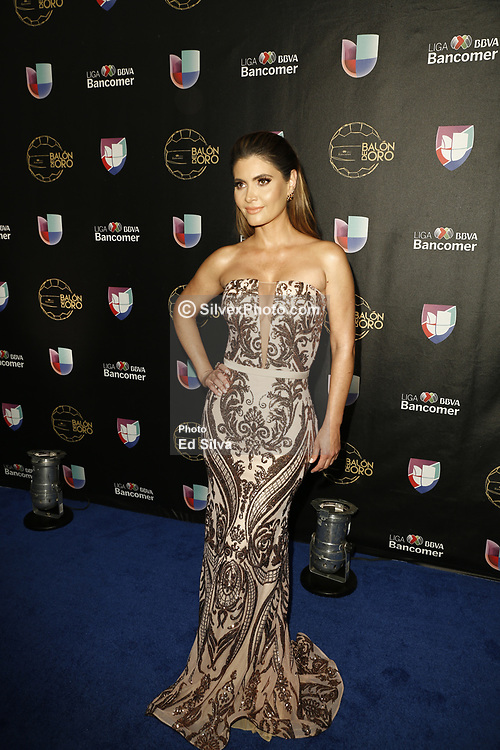 LOS ANGELES, CA - JULY 15: Chiquinquira Delgado attends Univision Deportes' Balon De Oro 2017 Awards at The Orpheum Theatre in Los Angeles, California on July 15, 2017 in Los Angeles, California. Byline, credit, TV usage, web usage or linkback must read SILVEXPHOTO.COM. Failure to byline correctly will incur double the agreed fee. Tel: +1 714 504 6870.