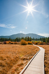 """Martis Valley Walkway"" - This walkway was photographed in a meadow at Martis Valley in Truckee, CA."