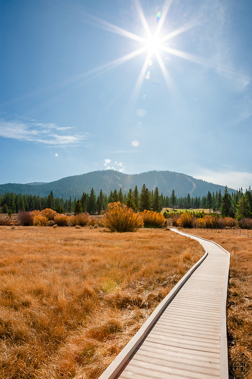"""""""Martis Valley Walkway"""" - This walkway was photographed in a meadow at Martis Valley in Truckee, CA."""