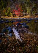 Patapsco Fall Glory. Patapsco River and fall trees in Oella, Maryland.