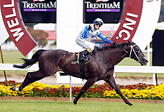 Wellington-Racing, Captain Cook Stakes