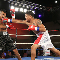 Toribio Ramirez (White Shorts) fights Cesar Cisneros during a Telemundo boxing match at the A La Carte Pavilion  on Friday, August 1, 2014 in Tampa, Florida. (AP Photo/Alex Menendez)