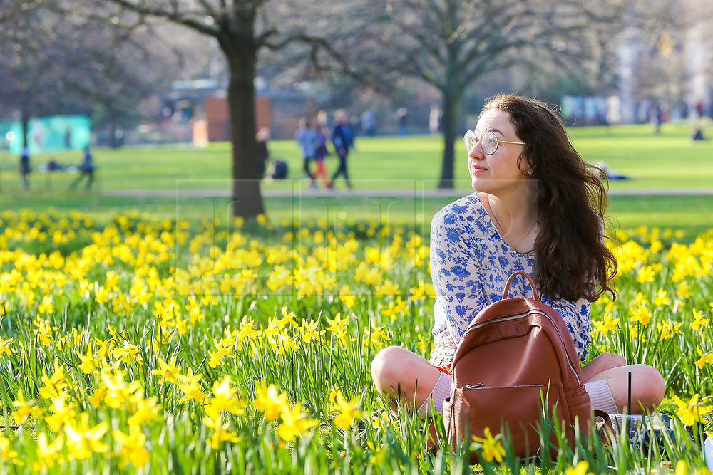 © Licensed to London News Pictures. 22/02/2019. London, UK. A woman sitting on the ground in St James's Park on a warm and sunny day as daffodils starts to blossom. Photo credit: Dinendra Haria/LNP