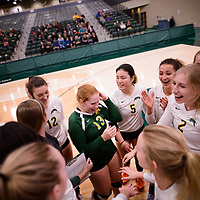 Cougars celebrate after their win of the Alberta Pandas after Women's Volleyball home game on November 3 at Centre for Kinesiology, Health and Sport. Credit: Arthur Ward/Arthur Images