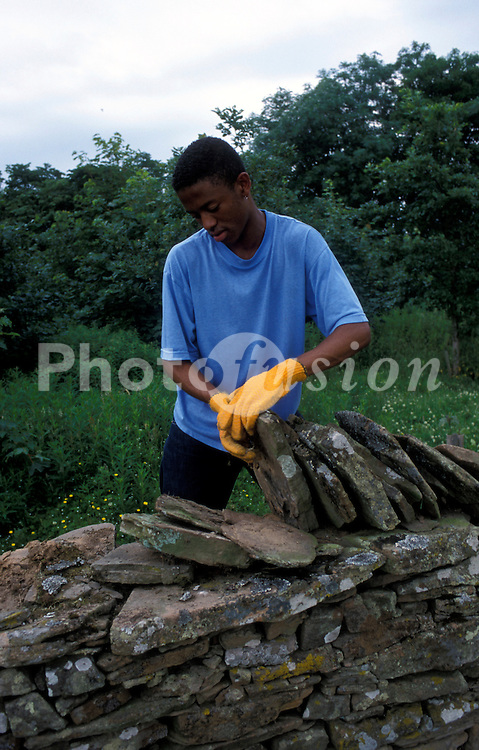 Volunteer dry stone walling; UK