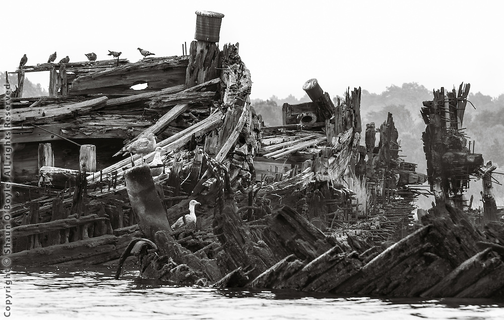 Wrecks, Arthur Kill