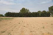 bare agricultural land France Provence