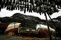 NORWAY LOFOTEN 29MAR07 - Wreck of a fishing boat and stockfish racks in Sørvågen on the Lofoten islands...jre/Photo by Jiri Rezac..© Jiri Rezac 2007..Contact: +44 (0) 7050 110 417.Mobile:  +44 (0) 7801 337 683.Office:  +44 (0) 20 8968 9635..Email:   jiri@jirirezac.com.Web:    www.jirirezac.com..© All images Jiri Rezac 2007 - All rights reserved.