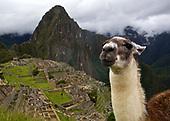 Machu Picchu & Sacred Valley
