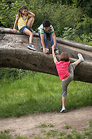 Three friends (7-9) climbing on fallen tree