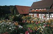 Deutschland, Germany,Baden-Wuerttemberg.Schwarzwald.Sasbachwalden, Fachwerkhaus, Blumengarten,.Sasbachwalden, timber framed house, flower garden...