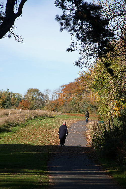 Two individuals walking through the park in Cabinteely Dublin Ireland