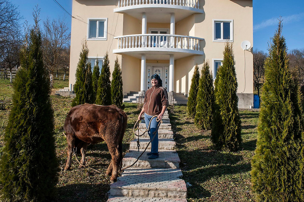 A woman with  a calf. Her sister works in USA and  sends the money home, to built the house