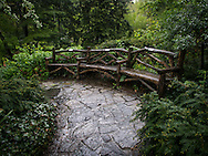 Rustic benches in Shakespeare Garden in Central Park.