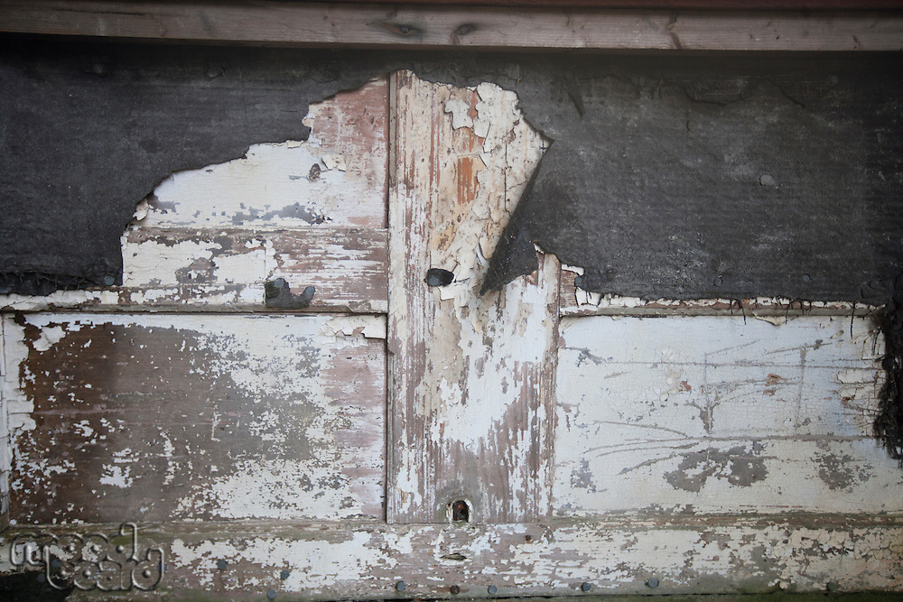 Weathered timber door with peeling paint