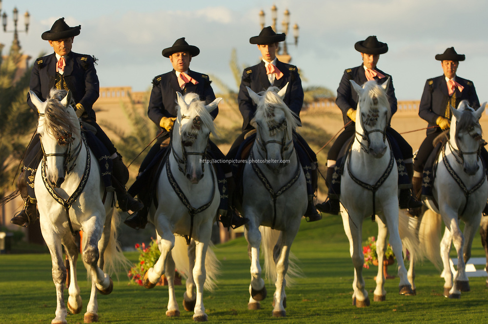 andalusian horses demonstration at  emirates palace, abu dhabi, uae, 14 february 2011, spain, arab emirates,