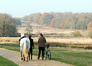 © Licensed to London News Pictures. 29/11/2014. Richmond, UK. Women with a bike and a horse walk through the park.  People and animals enjoy the late Autumn sunshine in Richmond Park, Surrey, today 29th November 2014. Photo credit : Stephen Simpson/LNP
