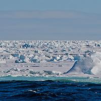 Alberto Carrera, Arctic Lands, Sea Ice, Edge of Pack Ice 80º N, Arctic, Spitsbergen, Svalbard, Norway, Europe