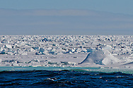 Alberto Carrera, Arctic Lands, Sea Ice, Edge of Pack Ice 80º N, Arctic, Spitsbergen, Svalbard, Norway, Europe