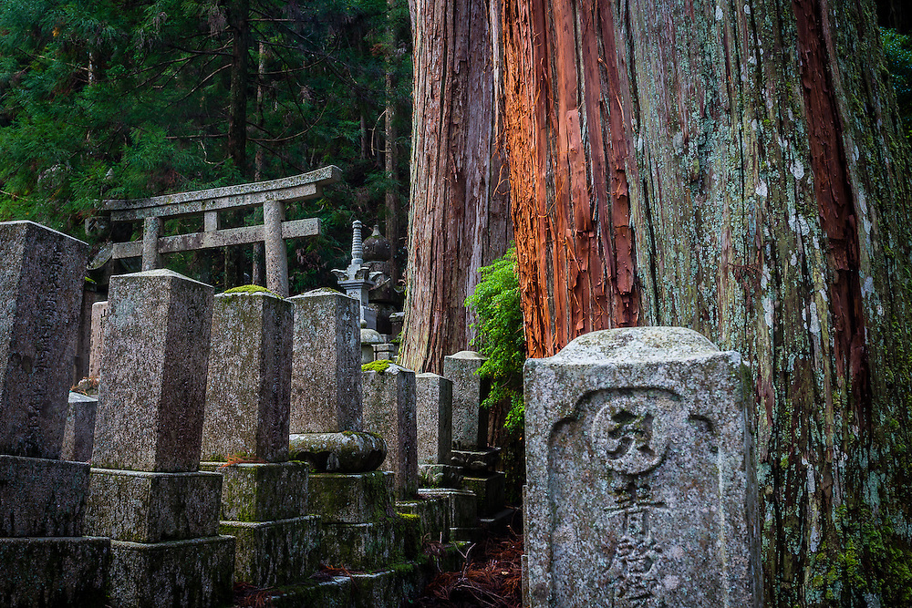 The buddhist cemetery of Koyasan was founded 1200 years ago and features ancient tombs of samurai lords, priests and common people, among century old japanese cedar trees. A walk in this place is truly a spiritual experience.