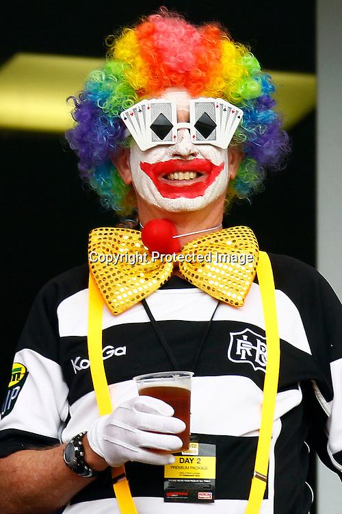 Costumed fan. Hertz Wellington Sevens - Day two at Westpac Stadium, Wellington, New Zealand on Saturday, 4 February 2012. Photo: Ella Brockelsby / photosport.co.nz