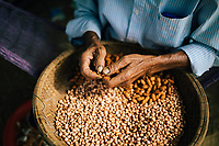 A man shells peanuts outside of his house in Hoi An, Vietnam.