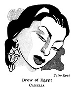 Cairo Road ; Camelia