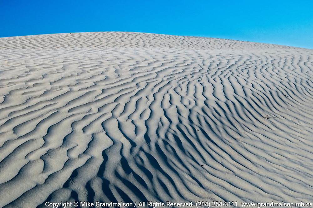 Snad dunes , Great Sand Hills, Saskatchewan, Canada
