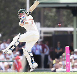 © Licensed to London News Pictures. 03/01/2014. Brad Haddin batting during the 5th Ashes Test Match between Australia Vs England at the SCG on 03 January, 2013 in Melbourne, Australia. Photo credit : Asanka Brendon Ratnayake/LNP