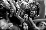 Rock gig crowds, Big Day Out Festival, Australia, 2000's