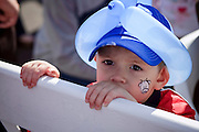 03 JANUARY 2009 -- PHOENIX, AZ: Colton Kempinski (CQ) 2, from Phoenix, watches the parade during the annual Ft. McDowell Fiesta Bowl parade through Phoenix, AZ. More than 150,000 spectators line the parade routes which starts in north Phoenix and winds down Central Ave and 7th Street before ending in central Phoenix. More than 100 units march in the parade.  PHOTO BY JACK KURTZ