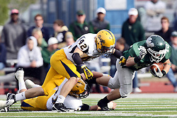12 November 2011:  Cameron Blossom stumbles ahead for some extra yards as Mike McLean arrives during an NCAA division 3 football game between the Augustana Vikings and the Illinois Wesleyan Titans in Tucci Stadium on Wilder Field, Bloomington IL