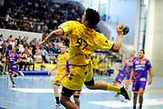 DESCRIZIONE : Handball Tournoi de Cesson Homme<br /> GIOCATORE : PITRE Jordan<br /> SQUADRA : Tremblay<br /> EVENTO : Tournoi de cesson<br /> GARA : Tremblay Selestat<br /> DATA : 07 09 2012<br /> CATEGORIA : Handball Homme<br /> SPORT : Handball<br /> AUTORE : JF Molliere <br /> Galleria : France Hand 2012-2013 Action<br /> Fotonotizia : Tournoi de Cesson Homme<br /> Predefinita :
