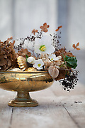 Winter Still Life with brown hydrangeas and helleborus niger in gold glass bowl