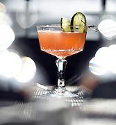 Mara Lavitt<br /> February 28, 2016<br /> For Connecticut Magazine<br /> The Mockingbird Kitchen & Bar, Bantam. The Dragon's Tale cocktail.