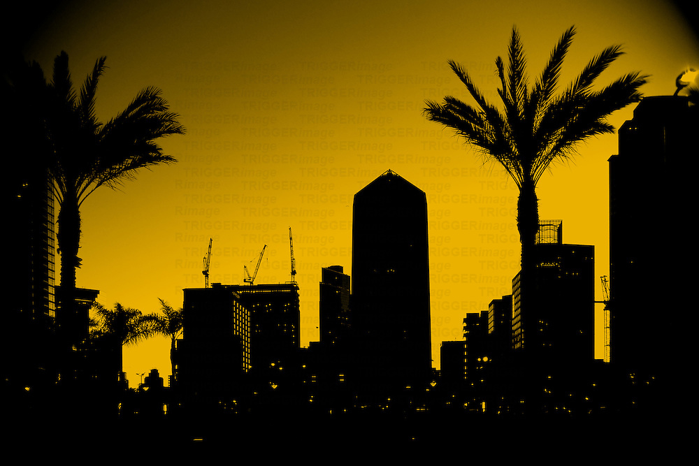 The outlines and silhouettes of skyscrapers in downtown San Diego.