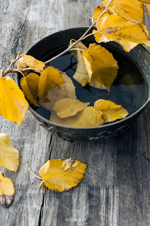 Yellow leaves resting upon a metal bowl on a wood table.