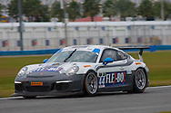 #44 Magnus Racing Porsche GT America: John Potter, Andy Lally