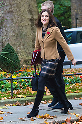 Downing Street, London, November 3rd 2015.  Northern Ireland Secretary Theresa Villiers arrives at 10 Downing Street to attend the weekly cabinet meeting. /// Licencing: Paul@pauldaveycreative.co.uk Tel:07966016296 or 020 8969 6875