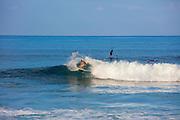 Surfing, Tracks, West side, Oahu, Hawai