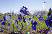 Memorial fence with a full view of Prince's Paisley Park Studios his home.  Chanhassen Minnesota MN USA