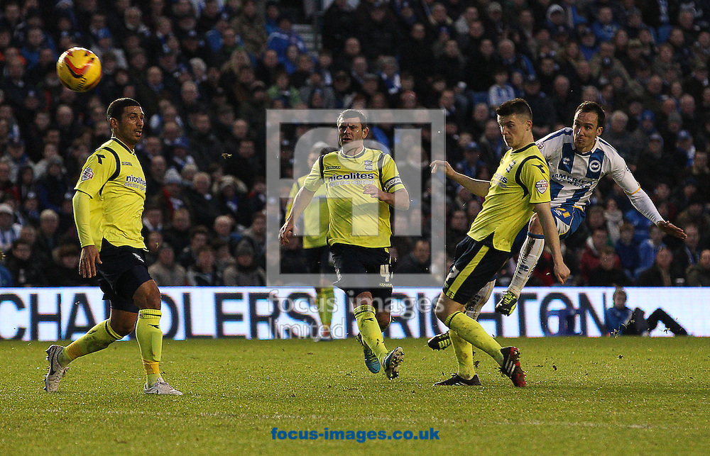 Picture by Paul Terry/Focus Images Ltd +44 7545 642257<br /> 11/01/2014<br /> David Lopez ( R ) of Brighton and Hove Albion has a shot on goal during the Sky Bet Championship match at the American Express Community Stadium, Brighton and Hove.