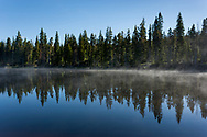Morning fog clears from a bay of Yellowstone Lake, with conifer forest, Yellowstone National Park, WY, © 2005 David A. Ponton