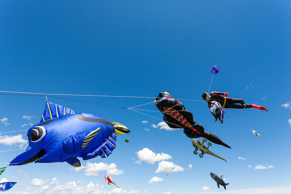 Kites soar high above the crowds. Windscape Kite Festival, Swift Current, Saskatchewan.
