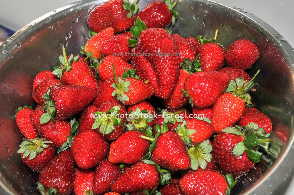 Fresh strawberry healthy snack