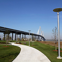 The Arthur J. Ravenel, Jr. Bridge spans the Cooper River and connects Charleston and Mount Pleasant, SC, USA. Reaching 1546 feet, the bridge, which opened in 2005, is North America's longest cable stay span. View is from a park below the bridge that leads to a pedestrian promenade.