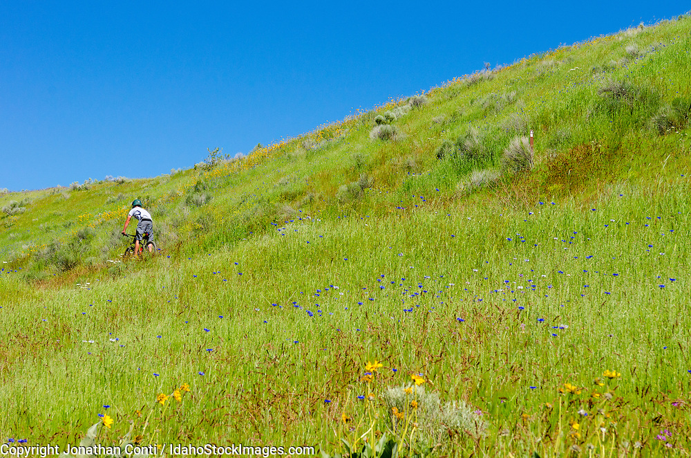 A man biking the Boise foothills in the spring
